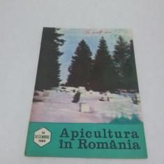 Revista/Ziar - REVISTA APICULTURA ÎN ROMÂNIA NR. 12-DECEMBRIE 1989