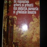 Carte Biologie - IOan C. Voiculescu Sa cunoastem arborii si arbustii din padurile, parcurile si gradinile noastre, 1978