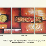 Reproducere - Tablou Trio Abstract 3 ( triptic - 3 piese - 150x60cm )