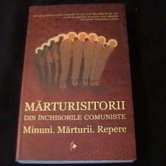 Istorie - MARTURISITORI- DIN INCHISORILE COMUNISTE-CIPRIAN VICILA-383 PG-