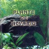 Neculai Barabas - Plante de acvariu - 22724
