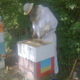 Vand cutii stupi verticali folosite si caturi+rame de 1/2