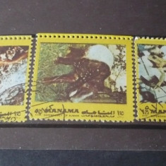 Timbre straine - MANAMA – ANIMALE SALBATICE MICI, serie stampilata N150