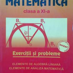 MATEMATICA CLASA A XI-A EXERCITII SI PROBLEME - Marius Burtea - Manual scolar, Clasa 11, Carminis