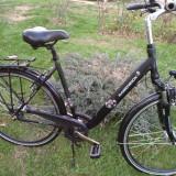 Bicicleta Dama, 22 inch, 28 inch, Numar viteze: 7 - BICICLETA RABENEICK (PT BUCURESTI O POT ADUCE PERSONAL)