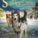 Decoratiuni - SUPRAVIEȚUITORII, vol. 2: DUȘMANUL ASCUNS