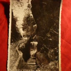 Ilustrata-Fotografie- Valea Vinului -Rogoza intre stane jud Bistrita Nasaud 1937 - Carte Postala Transilvania dupa 1918, Circulata