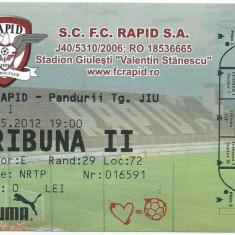 Bilet meci Rapid - Pandurii Tg. Jiu (2012)