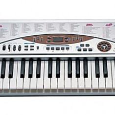 Orga electronica MLS--5498 54 de clape