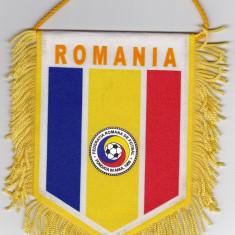 Fanion Federatia de Fotbal din ROMANIA (FRF) - Fanion fotbal