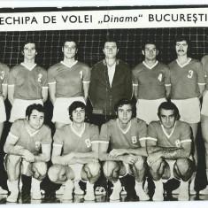 Fotografie Dinamo Bucuresti (1972, volei)