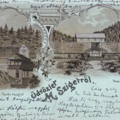 SIGHETUL MARMATIEI, SALUTARI DIN SIGHETUL MARMATIEI, CIRCULATA OKT.*903 - Carte Postala Maramures pana la 1904, Printata, Sighetu Marmatiei