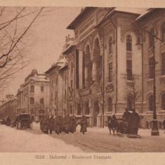 BUCURESTI, BULEVARDUL ELISABETA, MILITARI, SANII CU CAI, IARNA - Carte Postala Muntenia 1904-1918, Circulata, Printata