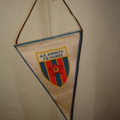 Fanion fotbal - Fanion A.S Tg. Mures