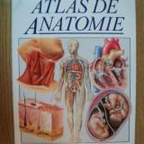ATLAS DE ANATOMIE de TREVOR WESTON , 1997