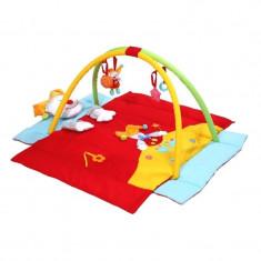 Centru de activitati BabyOno, Clown - Tarc de joaca