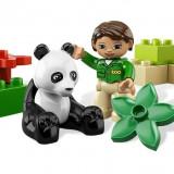 Ursuletul panda (6173)
