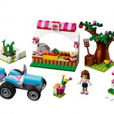 Livada insorita (41026) - LEGO Minecraft