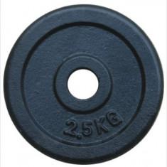 Greutate fier inSPORTline 2, 5kg/30mm