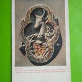 HOPCT 90 H SUCEAVA -BIS SF DIMITRIE /TURN ZIDIT DE A.LAPUSNEANU[NECIRCULATA ], Printata