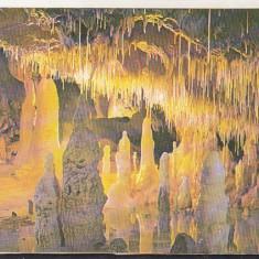 Bnk cp Pestera Ursilor - Chiscau - Bihor - necirculata - Carte Postala Crisana dupa 1918, Printata