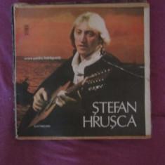 Vinil hrusca - Muzica Folk Altele