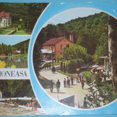 Carte Postala, Circulata, Fotografie - BAILE MONEASA (ARAD) - Foto Al. Mendrea - Editura Meridiane