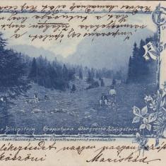 Romania, Konigstein, Piatra Craiului, carte postala circulata 1909: Panorama, Fotografie