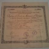 DIPLOMA DE DOCTOR IN MEDICINA SI CHIRURGIE - Diploma/Certificat