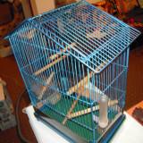 Cusca pentru pasarele utilata complet H=50 X L=30 X l=23 cm