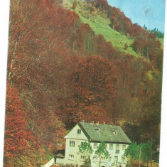 @carte postala(ilustrata) -BISTRITA NASAUD-CORMAIA-Cabana Farmecul Padurii - Carte Postala Transilvania dupa 1918, Circulata, Printata