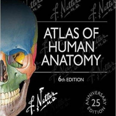 NEW Atlas of Human Anatomy by Frank H. Netter 6 ed(English) - Urgent!