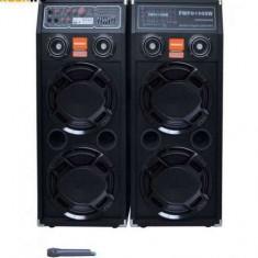 Sistem Karaoke boxe audio Temeisheng DP-2329 - Boxa activa