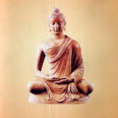 Povestiri Zen - 502503 - Carti Samanism