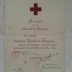 BREVET INSIGNA CRUCEA ROSIE SOCIETATEA REGINA ELENA 1943