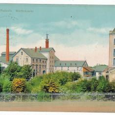 3167 - Suceava, RADAUTI, Beer Factory - old postcard, CENSOR - used - 1907 - Carte Postala Bucovina 1904-1918, Circulata, Printata
